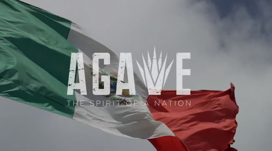 Agave Spirit of a Nation